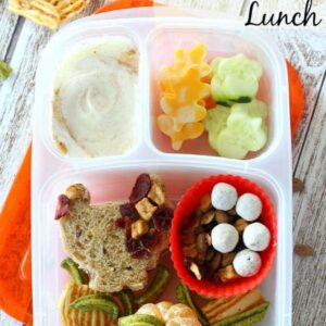 Make your holiday season a little healthier with this easy Fall Themed Bento Box Lunch! You and your kiddos will love making this fun and easy meal using delicious and nutritious NatureBox snacks!