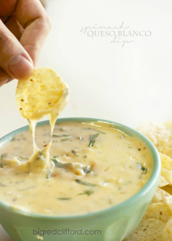 The Best Queso Blanco Dip