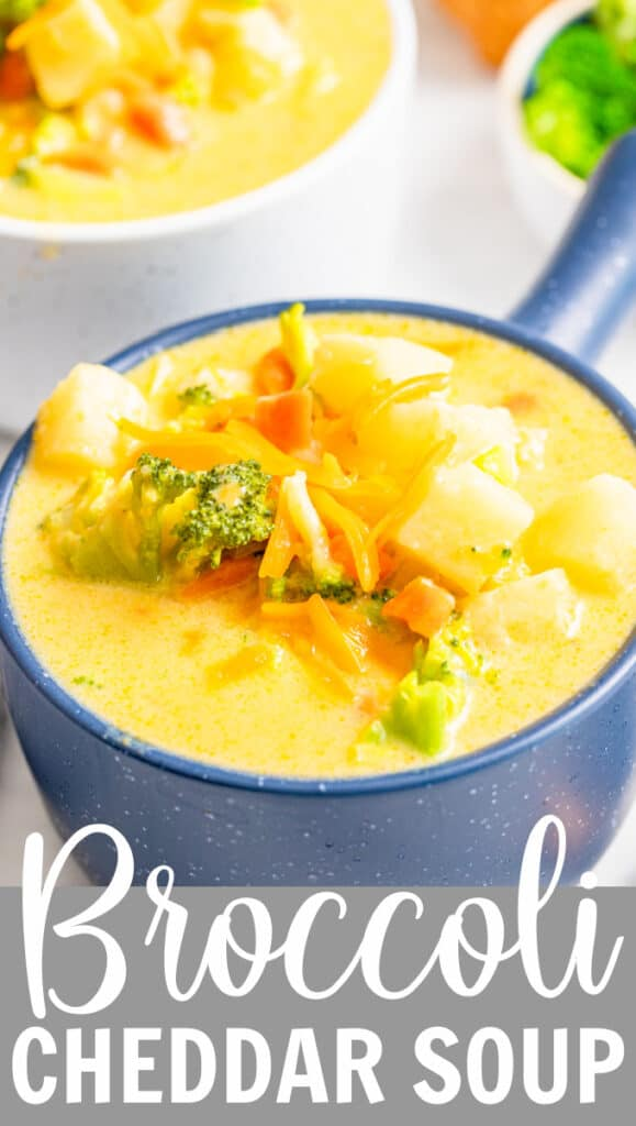 a blue bowl of broccoli cheese soup